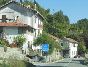 Siginella