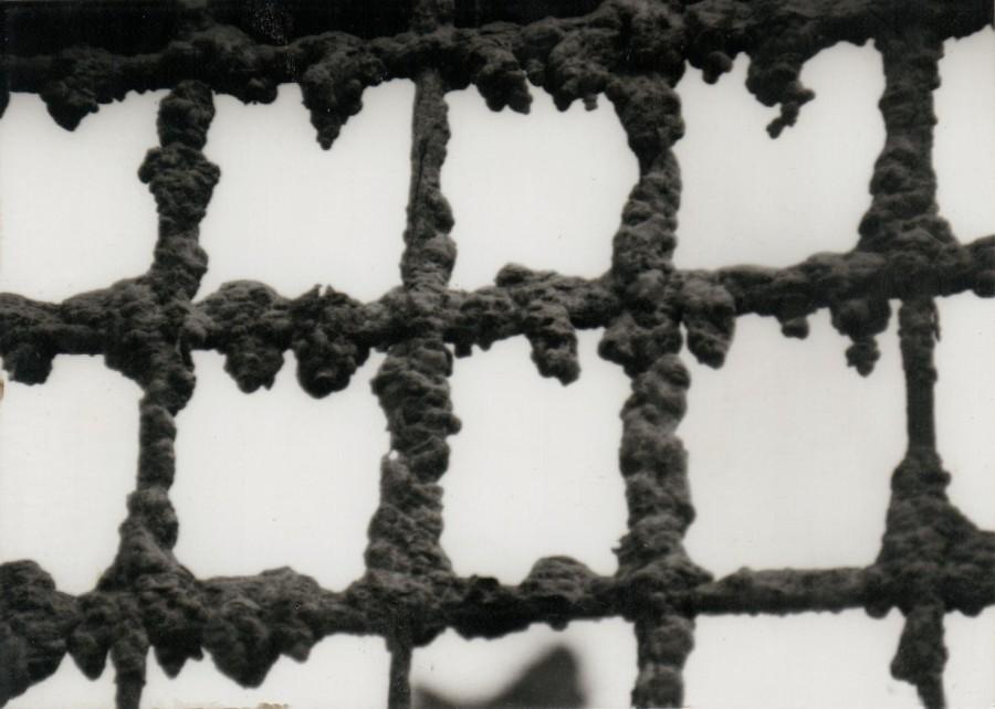 Sbarre di una finestra della chiesa di Fabbriche di Careggine (agosto 1994)