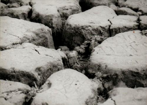 Fondo del lago di Vagli (agosto 1994)