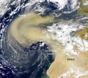 Calima, il vento del Sahara